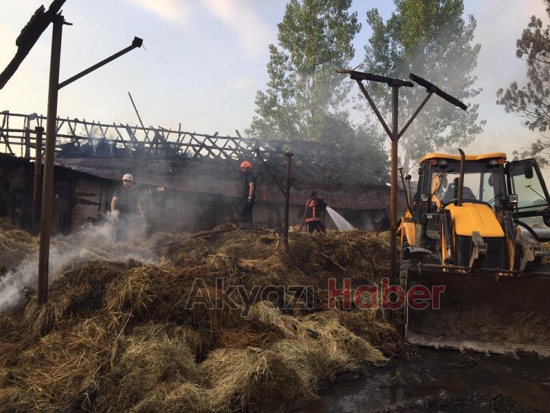 4 büyükbaş telef oldu, yüzlerce saman yandı